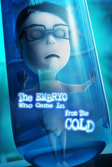 Эмбрион, который появился из холода