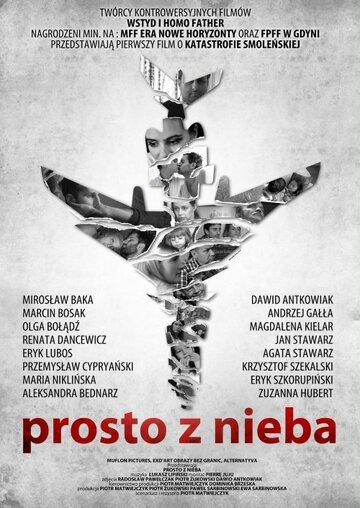 Прямо с неба (2011)