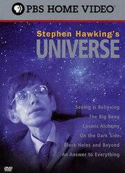 Смотреть онлайн Вселенная Стивена Хокинга