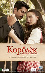 Смотреть Королек птичка певчая (2013) (2013) в HD качестве 720p