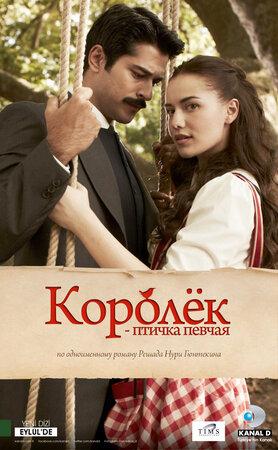 Королёк – птичка певчая (2013)