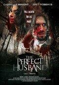 Идеальный муж (2014)