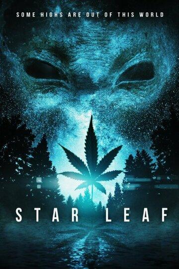 Звездная травка / Star Leaf (2015)