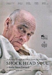 Душа потрясенного ума (2011)