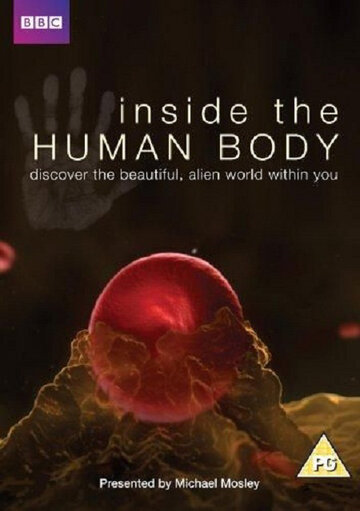 ������ ������������� ���� (Inside the Human Body)