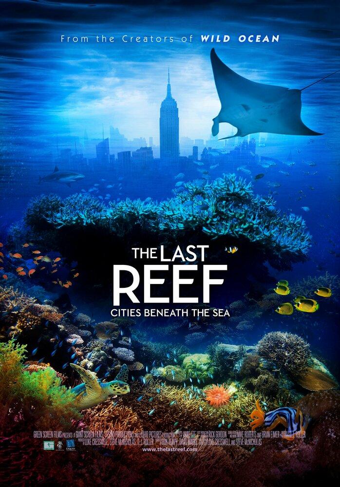 Коралловый риф 3d скачать торрент.