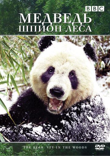 Медведь: Шпион леса (2004)