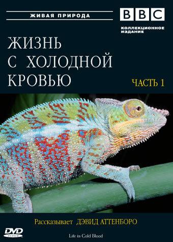 KP ID КиноПоиск 451278
