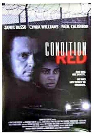 Состояние аффекта (1995)