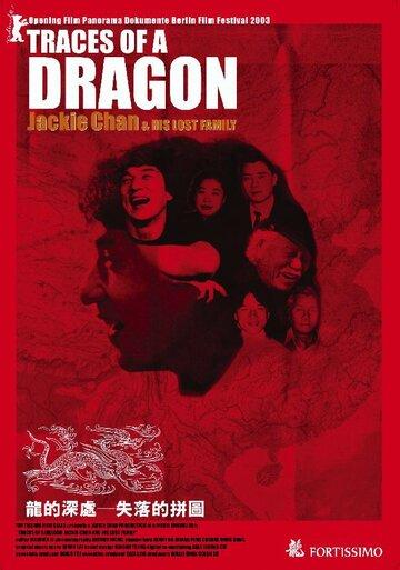 Джеки Чан и его пропавшая семья (2003)