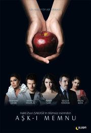 Запретная любовь (2008) смотреть онлайн в хорошем качестве