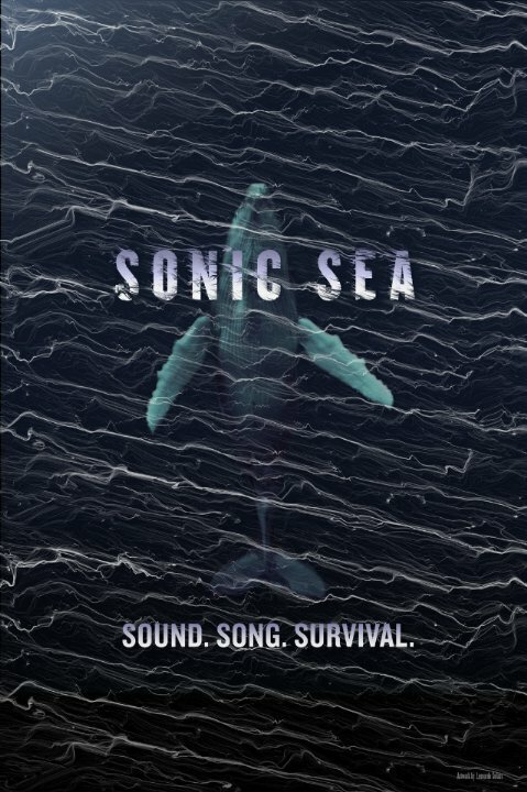 Discovery.Оглушающий океан | Sonic Sea | Смотреть онлайн HD