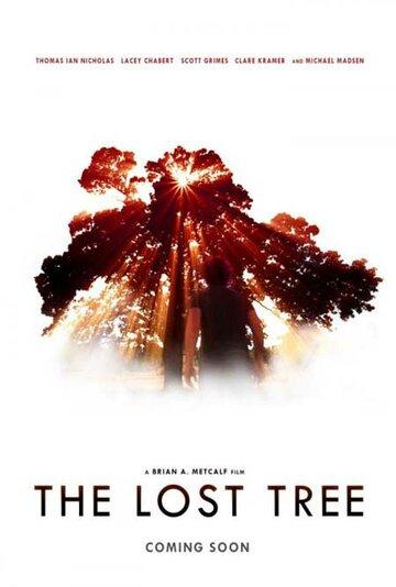 Потерянное дерево 2016