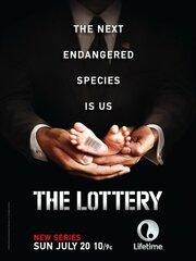 Смотреть Лотерея (1 сезон) (2014) в HD качестве 720p