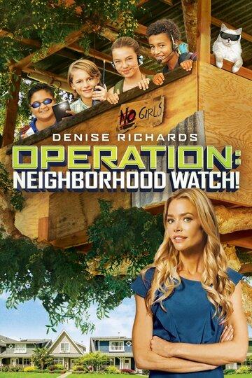 Операция «Сосед» (2015)