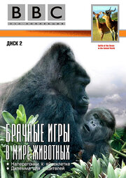 BBC: Брачные игры в мире животных (1999)