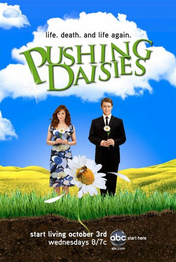 Сериал Мертвые до востребования / Pushing Daisies (сезон 2) смотреть онлайн