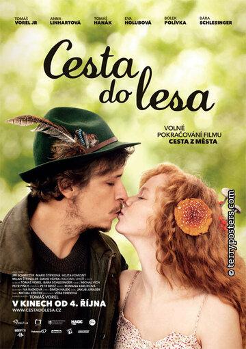 Путешествие в лес (Cesta do lesa)