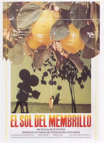 Солнце в листве айвового дерева (1992)