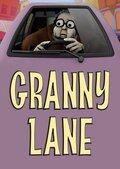 Бабуля на дороге!