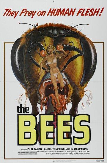 Пчелы (1978)