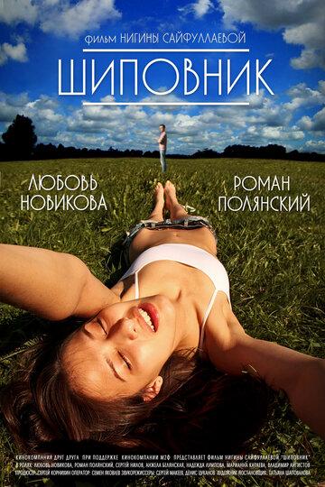 Шиповник (2011) — отзывы и рейтинг фильма