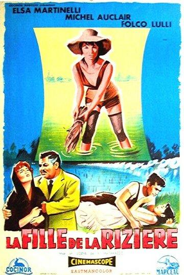 Рисовое поле (1956)