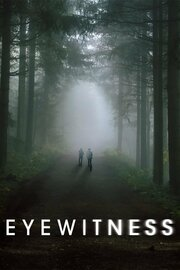 Смотреть онлайн Свидетели
