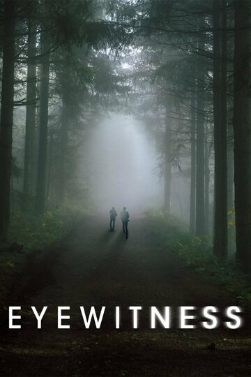 Очевидец (2016)