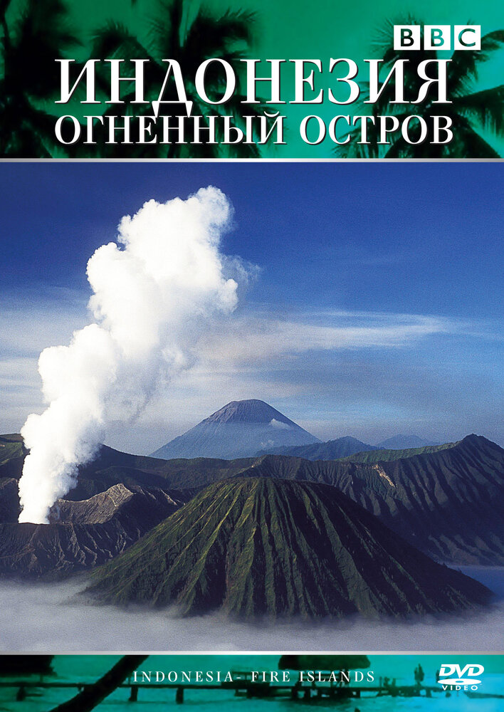 ВВС. Индонезия: Огненный остров / ВВС. Indonesia: Islands on Fire (Медеа Бенжамин, Мария Луиза Мендонича) [1996, документальный, DVDRip] DVO