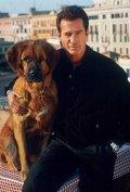 Собачье дело (сериал, 1 сезон) (2000) — отзывы и рейтинг фильма