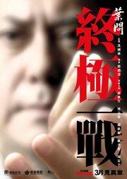 Смотреть Ип Ман 4: Последняя схватка (2013) в HD качестве 720p