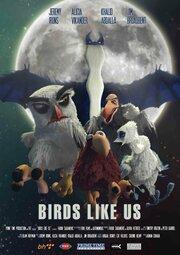 Birds Like Us (2017)