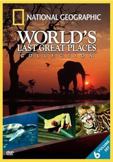 National Geographic: Специальный выпуск (1964) полный фильм