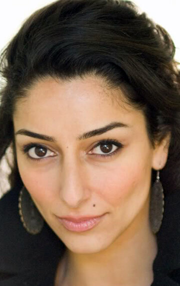 necar zadegan how i met your mother
