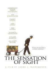 Ощущение видения (2006)
