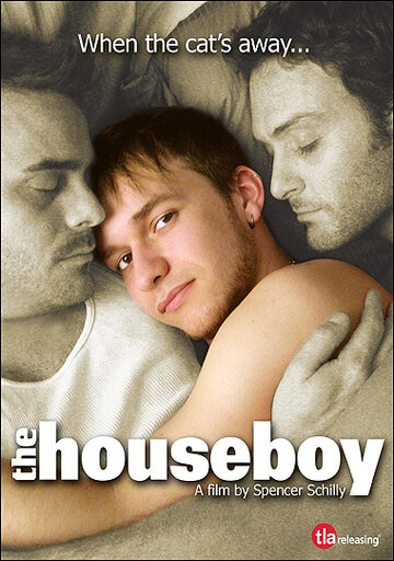 Фильм Домашний мальчик
