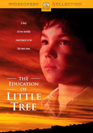 Приключения маленького индейца / The Education of Little Tree / 1997