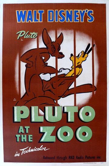 Плуто в зоопарке (1942)