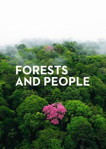 О лесах и людях (2011)