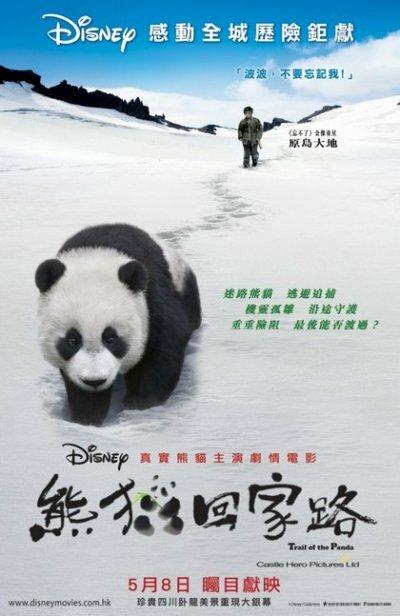 452780 - След панды ✸ 2009 ✸ Китай