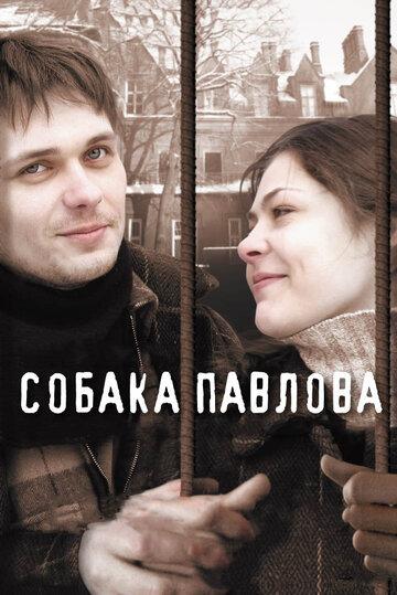 Собака Павлова 2005
