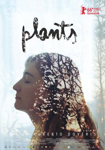 Растения (Las plantas)