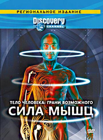 Discovery: Тело человека. Грани возможного смотреть онлайн
