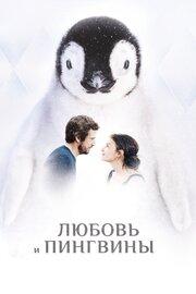 Любовь и пингвины