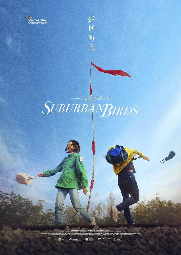 1177932 - Пригородные птицы ✸ 2018 ✸ Китай