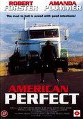 Американское совершенство (1997)