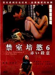 Идеальное образование 6 (2004)