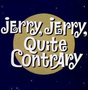 Смотреть онлайн Джерри-лунатик