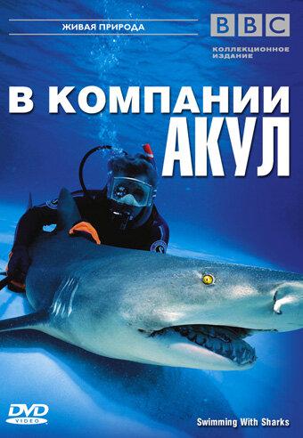 BBC: В компании акул (2002)